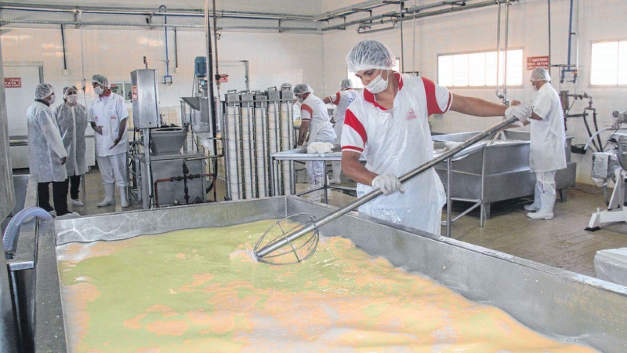 Aumento da oferta de leite em MT pressiona valores ao longo da cadeia, diz Imea